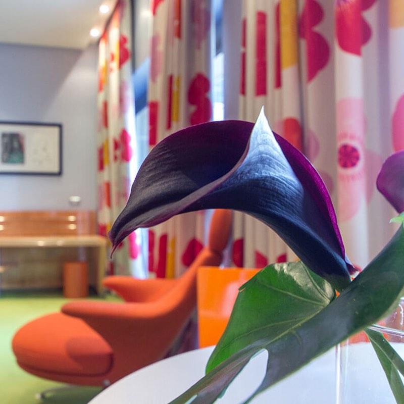 Camere & Suite - Hotel Albani Roma
